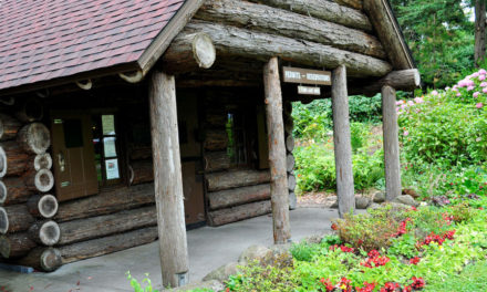 Authentic Redwood Pioneer Log Cabin – Time Travel To The 1800s