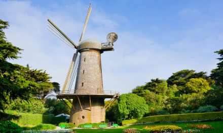 Golden Gate Park Windmills & Tulips