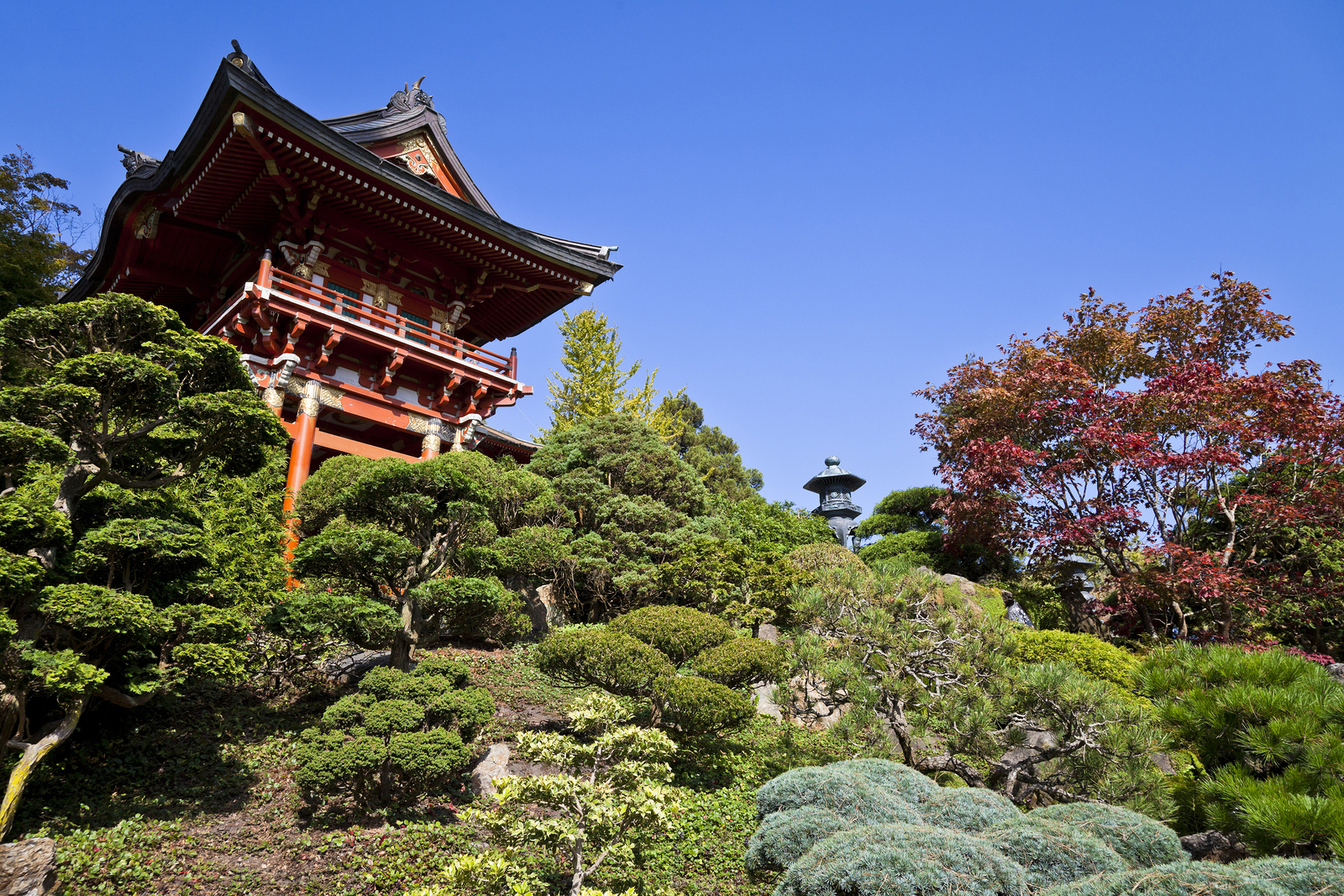 Japanese tea garden in golden gate park - Japanese tea garden san francisco ...