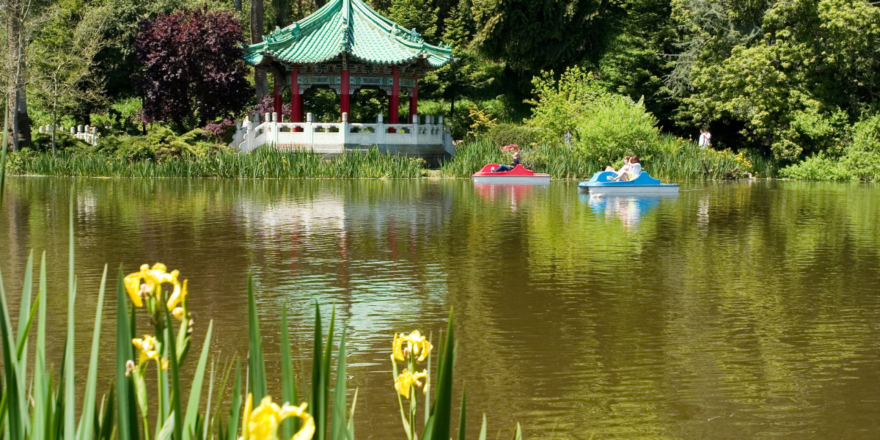 Golden Gate Park Lakes