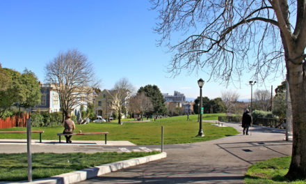 Duboce Park – Where Dog Walkers & Creative Minds Mix