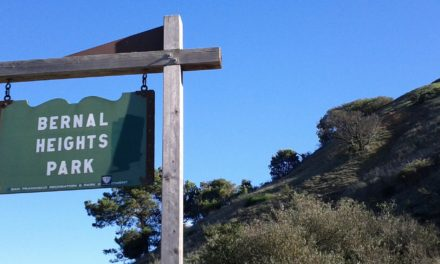 Bernal Heights Park – Amazing Hiking in the Heart of SF